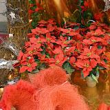 Exposició de Complements de Floristeria i Jardineria de Nadal 2014 - DSC_0036.JPG