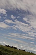 2012-06-Zora4-202
