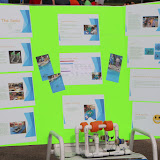 SeaPerch Competition Day 2015 - 20150530%2B08-01-14%2BC70D-IMG_4700.JPG