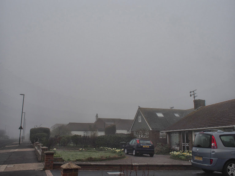 fog in shoreham