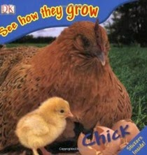 See How They Grow Chicks