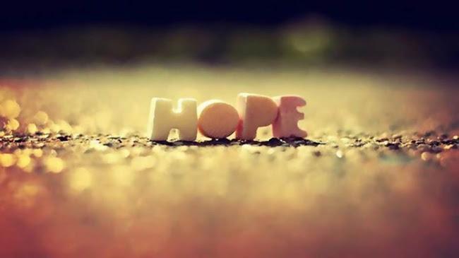 Hạt giống của hy vọng