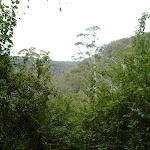 View From Hammons Road (360134)