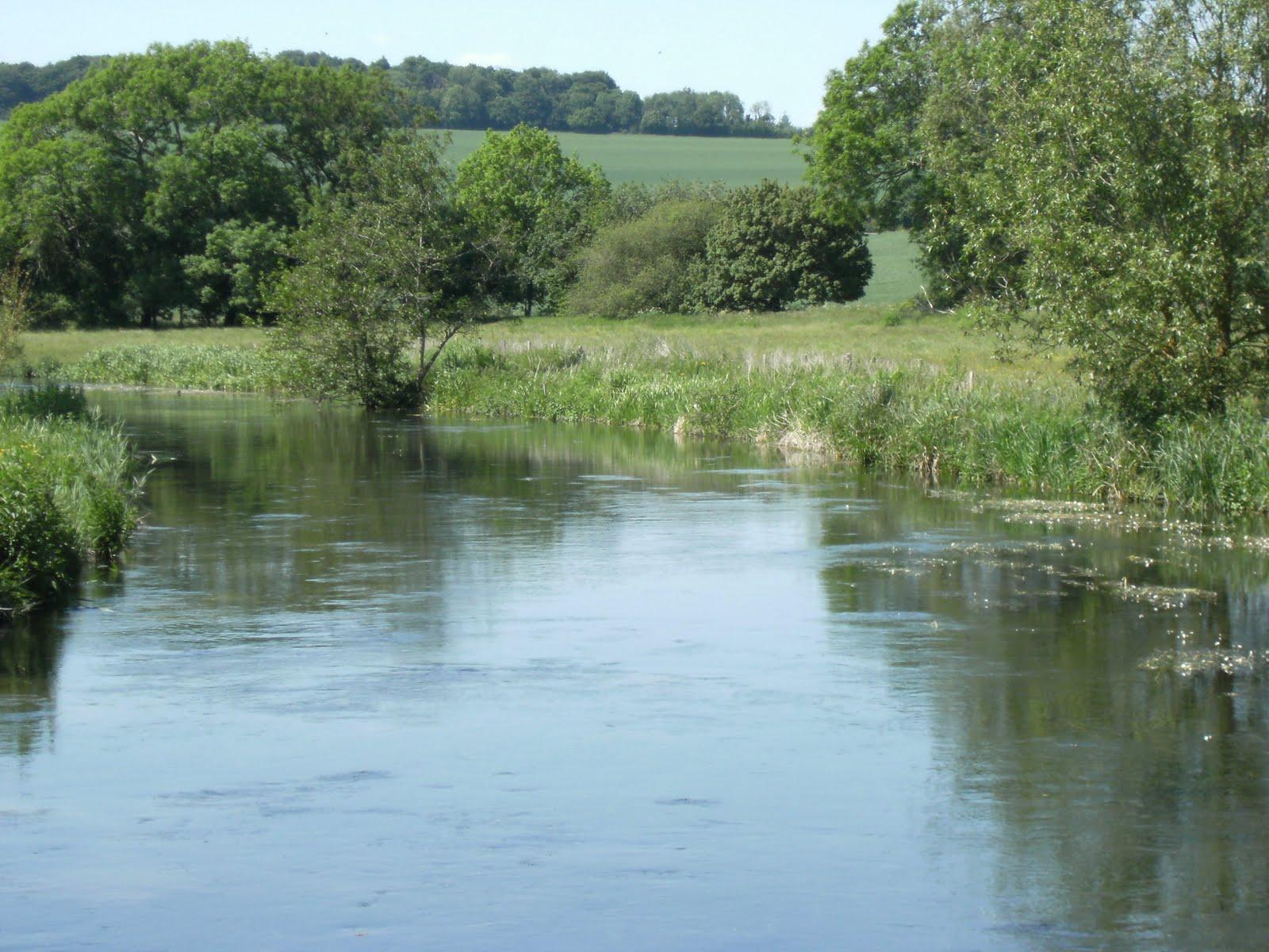 DSCF0869 River Avon