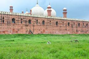 badshahi-masjid Lahore