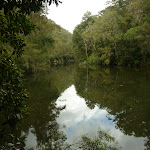 Berowra Creek (328940)