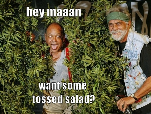 cheech and chong bong hit burn-outs