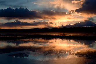 Photo: Sunset at Bosque del Apache