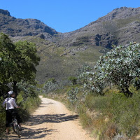 Biking in Jonkershoek Nature Reserve