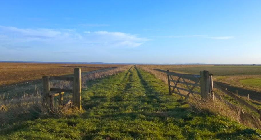 Wash path, between King's Lynn and Sutton Bridge