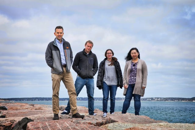 Dr. Christopher Gobler and his team (L to R:) Andrew Griffith, Dr Theresa Hattenrath-Lehmann, and Dr Yoonja Kang. Their study, published in PNAS on 18 April 2017, links ocean warming since the 1980s to the spread of toxic algae. Photo: SBU