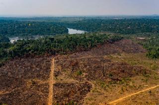 Desmatamento na Amazônia bate recorde pelo 3º mês consecutivo