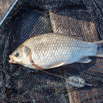 20140517_Fishing_Bochanytsia_024.jpg