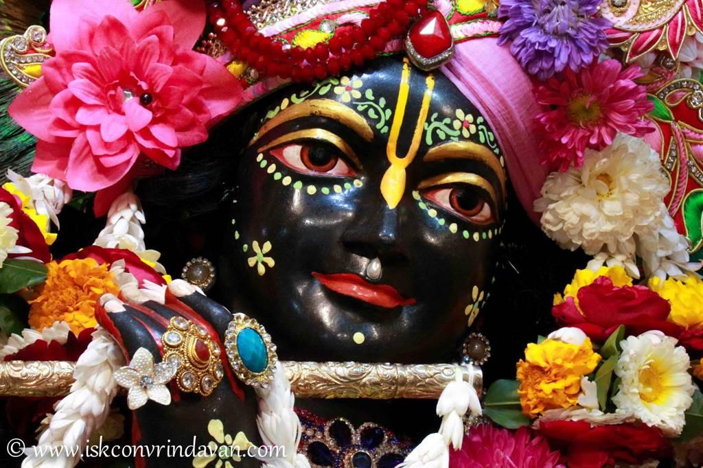 ISKCON Vrindavan Sringar Deity Darshan 29 Feb 2016 (19)