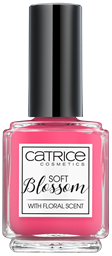 Catr_Soft-Blossom_NP05_1477408656