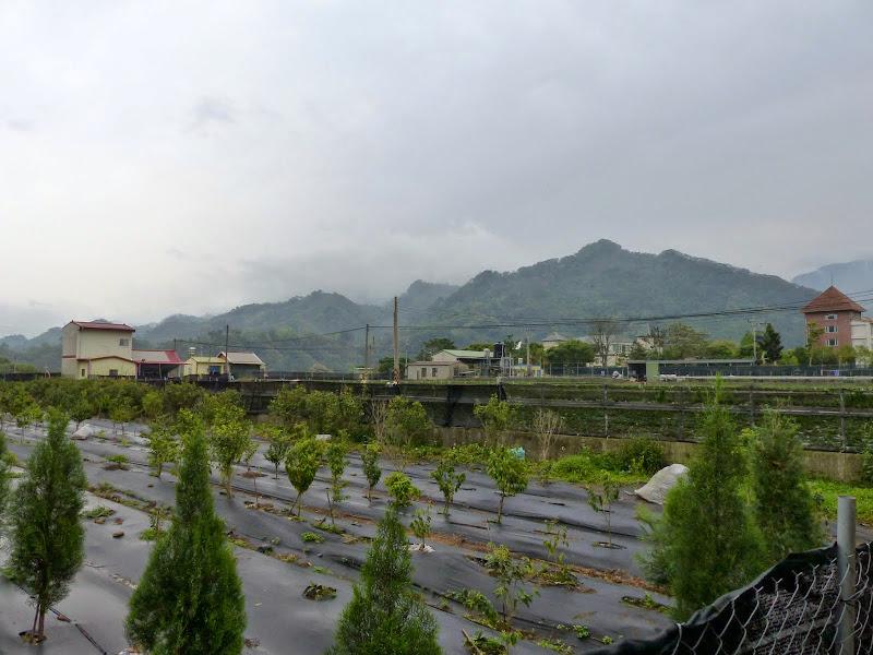 Miaoli county. Nanzhang puis Dahu la capitale de la fraise... - P1050257.JPG