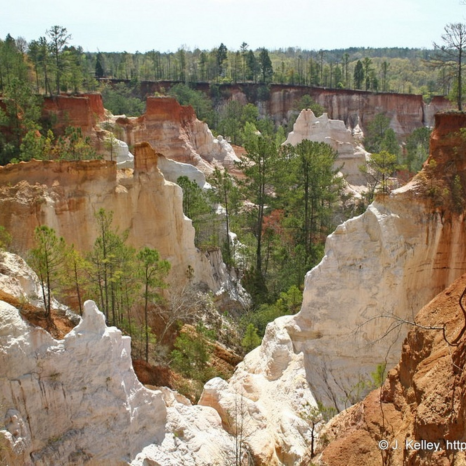 Providence Canyon: The Man-made Natural Wonder