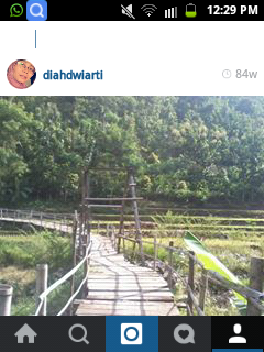 A Wooden Bridge In My Instagram