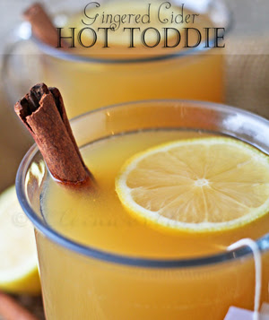 Gingered Cider Hot Toddie