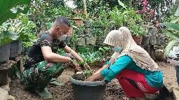 Pot Bunga Ingatkan Bu Nurmala Pada Kebaikan Satgas  TMMD Kodim Tapsel