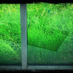 20120629-01-railway-green.jpg