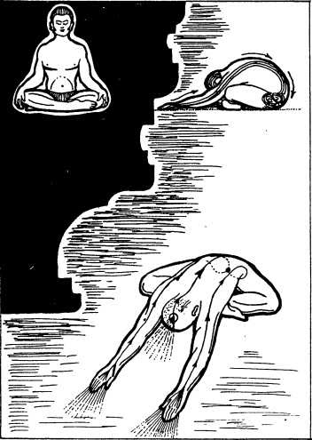 1. Упражнение «Йога мудра»