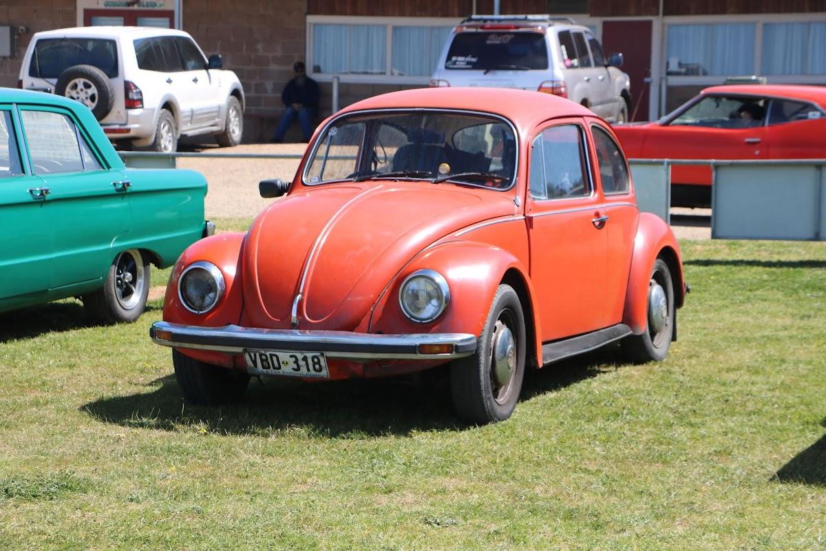 VW Bug (01).jpg