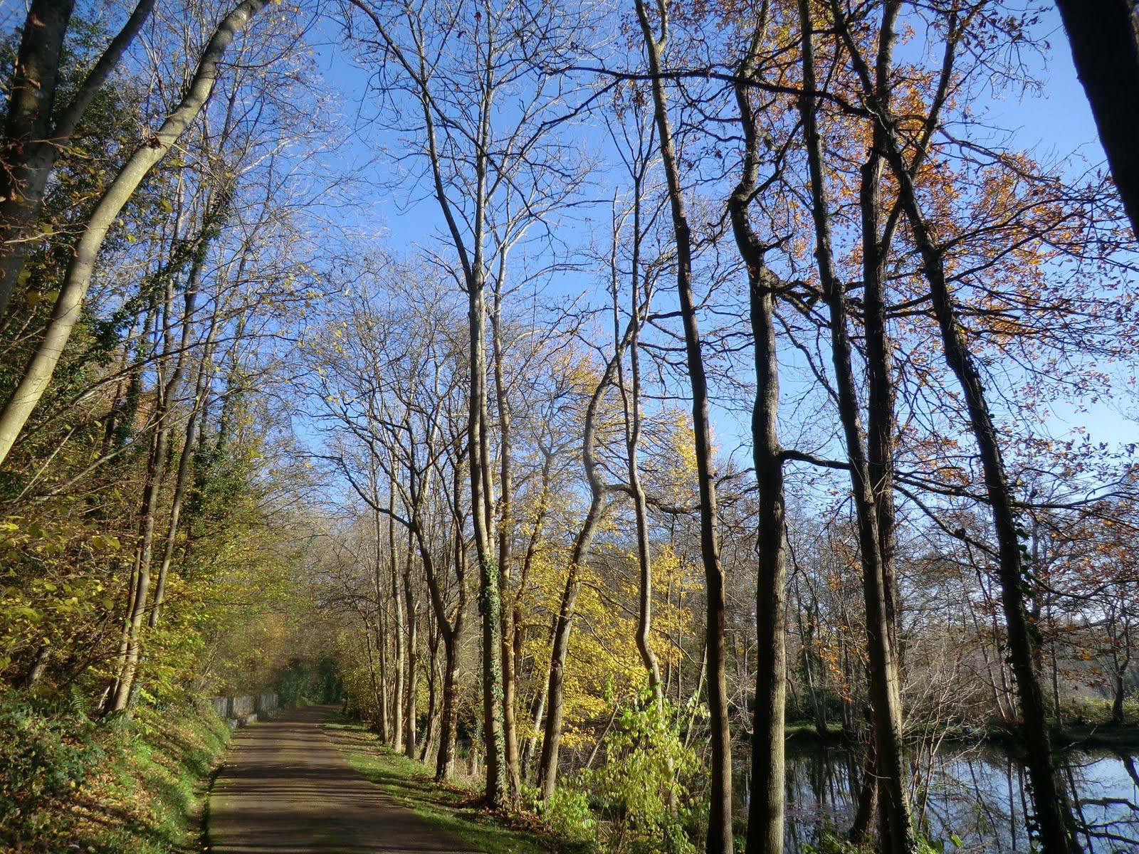 CIMG6246 Burrswood driveway