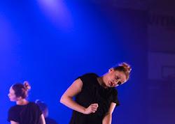 Han Balk Voorster Dansdag 2016-5081.jpg