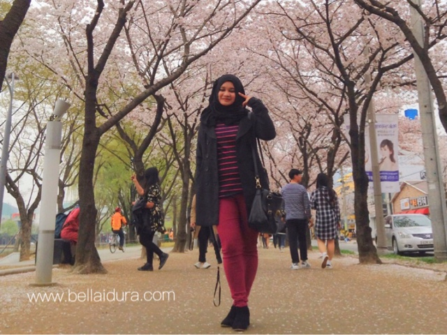 pengalaman ke korea