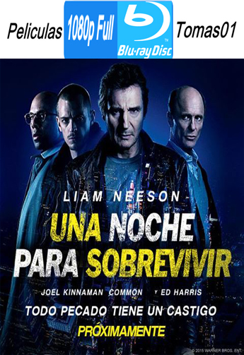Una Noche para Sobrevivir (Run All Night) (2015) BRRipFull 1080p