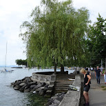 admiring the waterfront in Lausanne, Switzerland in Gruyeres, Fribourg, Switzerland