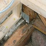 Carpentry - Water damage/after demo/ Cedarburg - P1000123.JPG