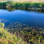 20140719_Fishing_Lysyn_043.jpg