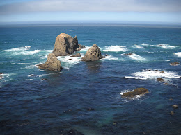 Looking out at the Pacific from Highway 1.