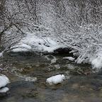 0135_Kanada_15-Nov-11_Limberg.jpg