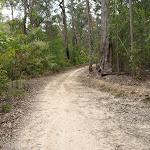 Turners Road NE of Mt Warrawolong (363764)