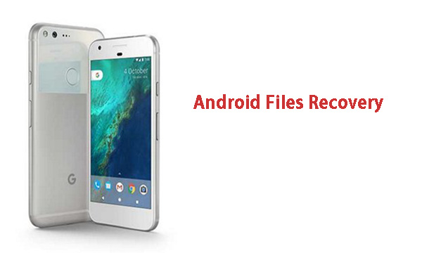Re: How to Recover Deleted Photos from Google Pixel - Picasa