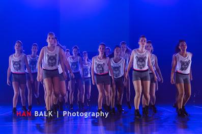 Han Balk Voorster Dansdag 2016-4612-2.jpg