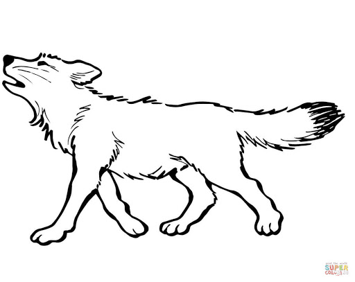 superb baby foxes coloring pages with wolf coloring pages and wolf ...