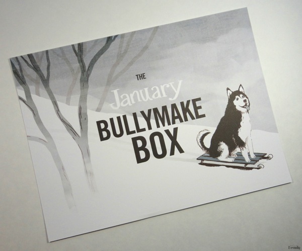 January 2018 Bullymake Box Review 2