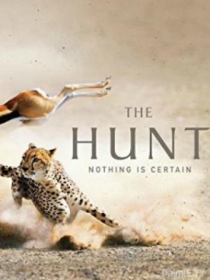Phim Cuộc Săn Đuổi Phần 1 - The Hunt Season 1 (2015)