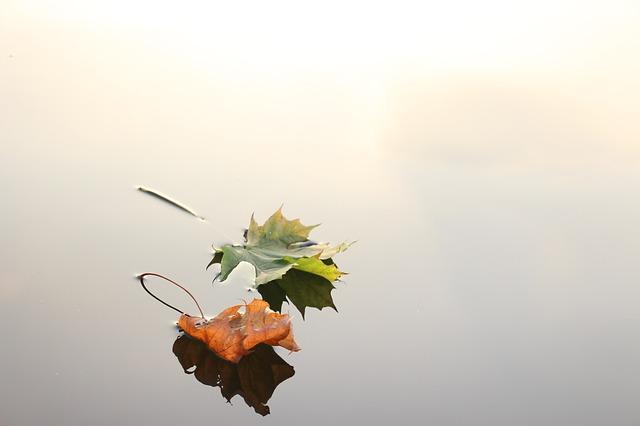Eterno Outono