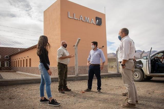 Reactivarán el proyecto de investigación astrónomico Llama