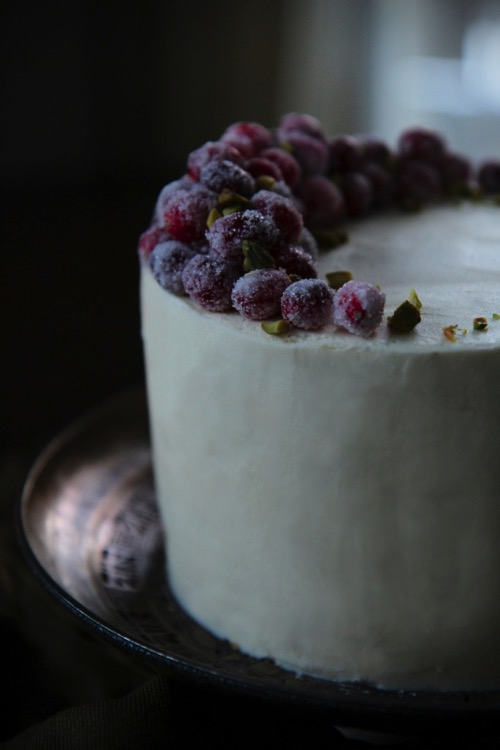 gingerbread cake with sugared cranberries