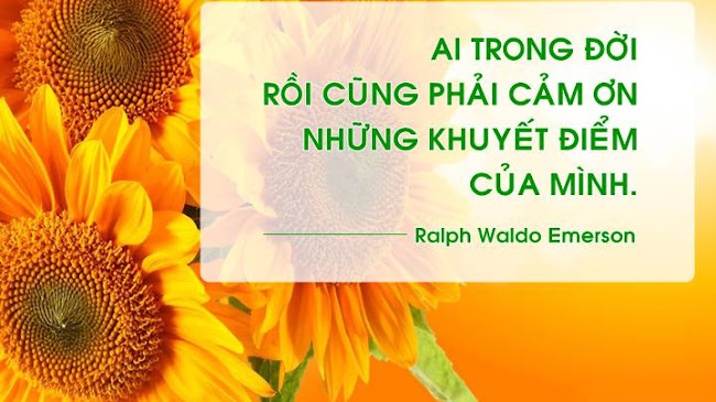 Hãy tha thứ cho những khuyết điểm, sai lầm của mình và tiến bước