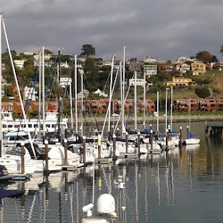 Corinthian Yacht Club's profile photo