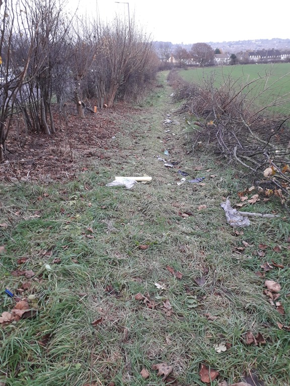 [Hedge+cleaned++out+for++hedge+laying+by+jpl+%5B4%5D]