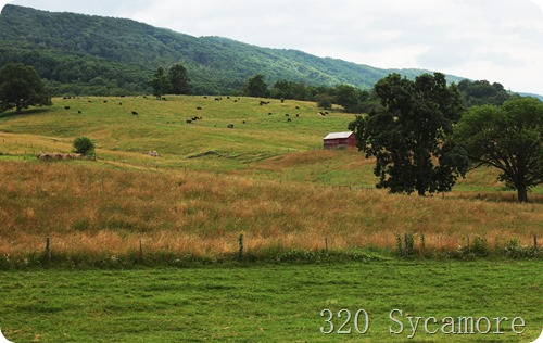 virginia countryside