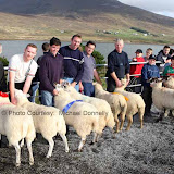 John and Edward Fadian had best Pen of 2 Crossbred Ewes (Open) at the 21st Achill Sheep Show (Taispeántas Caorach Acla 2007) at Pattens Bar, Derreens Achill. 2nd was Padraic Lydon Newport assisted by Pat Chambers; 3rd John Dyra  Newport and James Ryder; and 4th  Sean and Lee Mooney. Photo: © Michael Donnelly